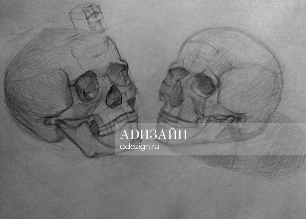 Рисунок черепа